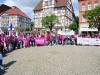 komba-SuE-Demonstration 13. Mai 2015  in Peine